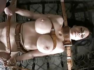 Bondage whore Ashley Renee gets toyed by master BDSM porn
