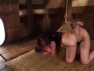 Asian babe is tied up and slapped hard by master