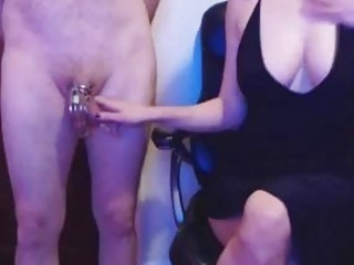 Busty chicks in a bikini love to torture cocks BDSM
